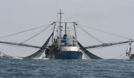 fishing-vessel-trawler-by-science-for-environment-policy