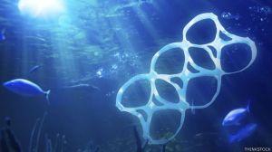 plastic-in-the-ocean-los-peces-ingieren-los-trozos-diminutos-de-plastico-y-asi-es-como-ingresan-en-la-cadena-alimenticia